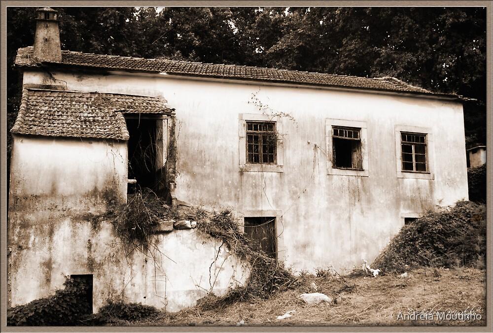Ruined Dream by Andreia Moutinho