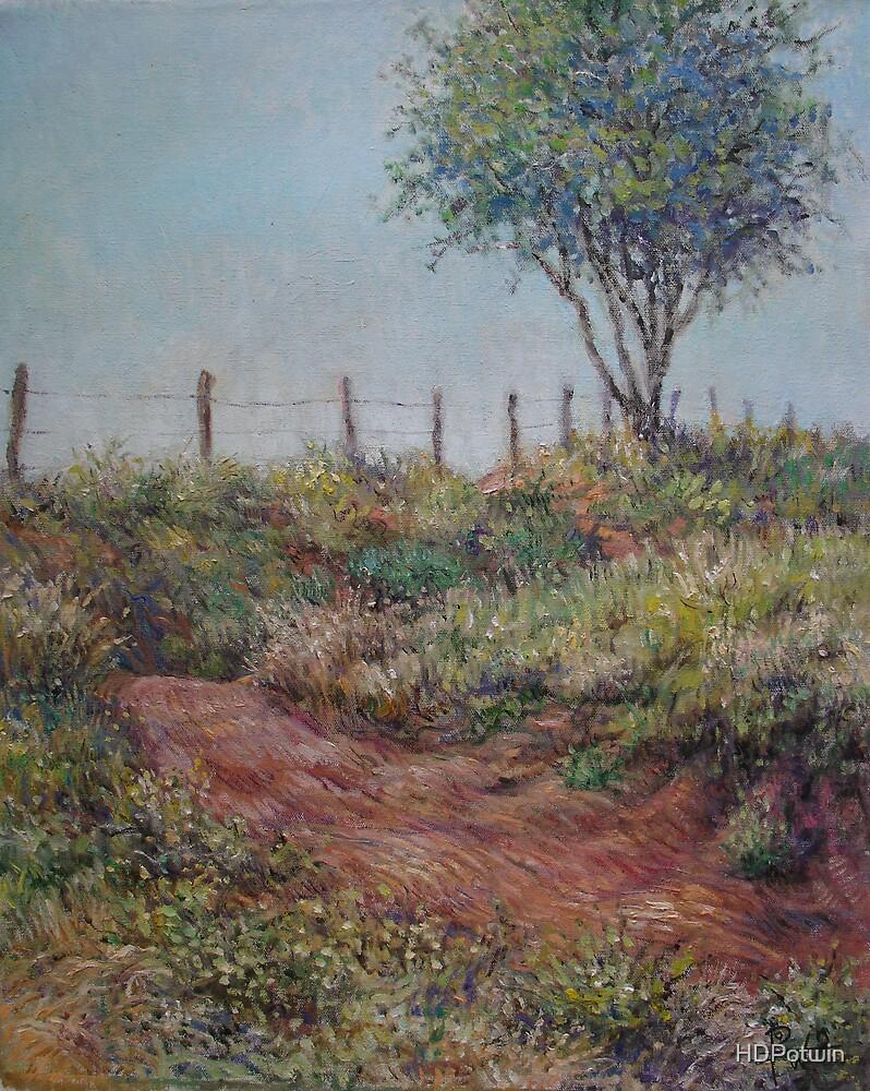 Fenceline by HDPotwin