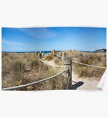 sand path Poster