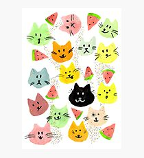Kitty Melon Party Photographic Print