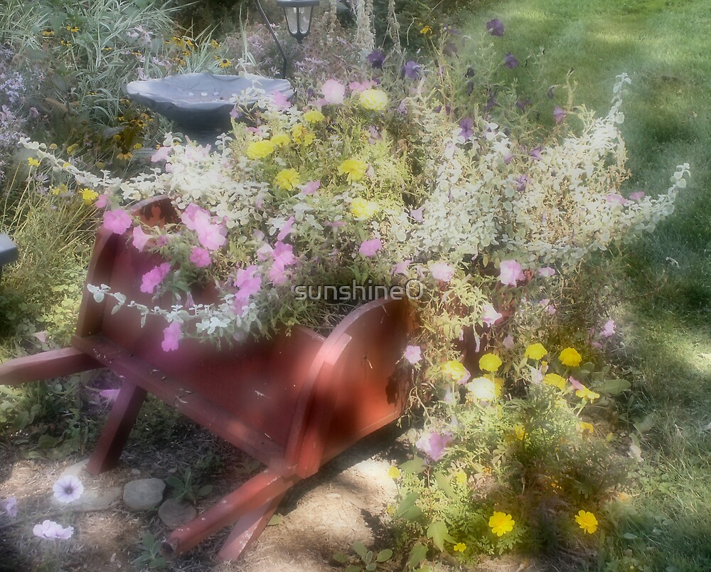 Wheel barrow of nature by sunshine0