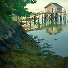 Fisherman's shack and vegetation, Coast of Maine by fauselr