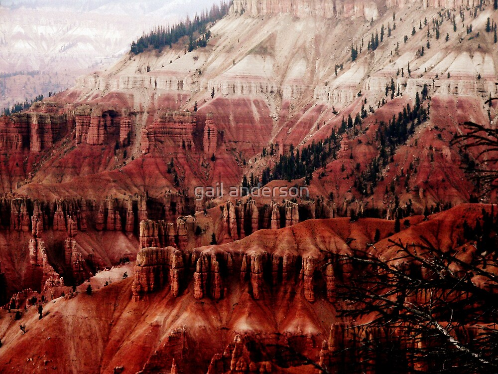 Cedar Breaks National Monument by gail anderson