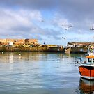 Victoria Harbour, Dunbar, Scotland by Christine Smith
