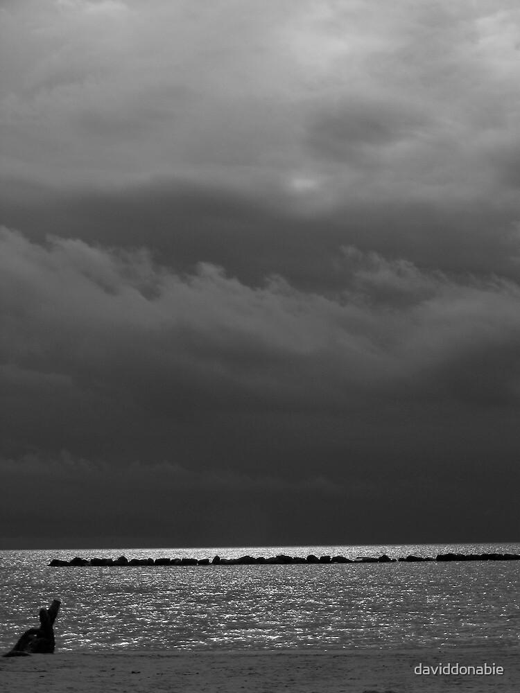 black and White  by daviddonabie