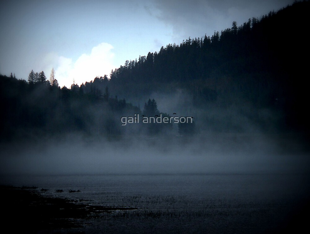 emerging by gail anderson