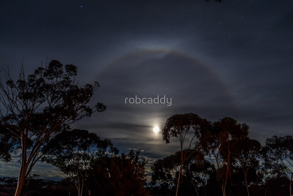 Moon Ring by robcaddy