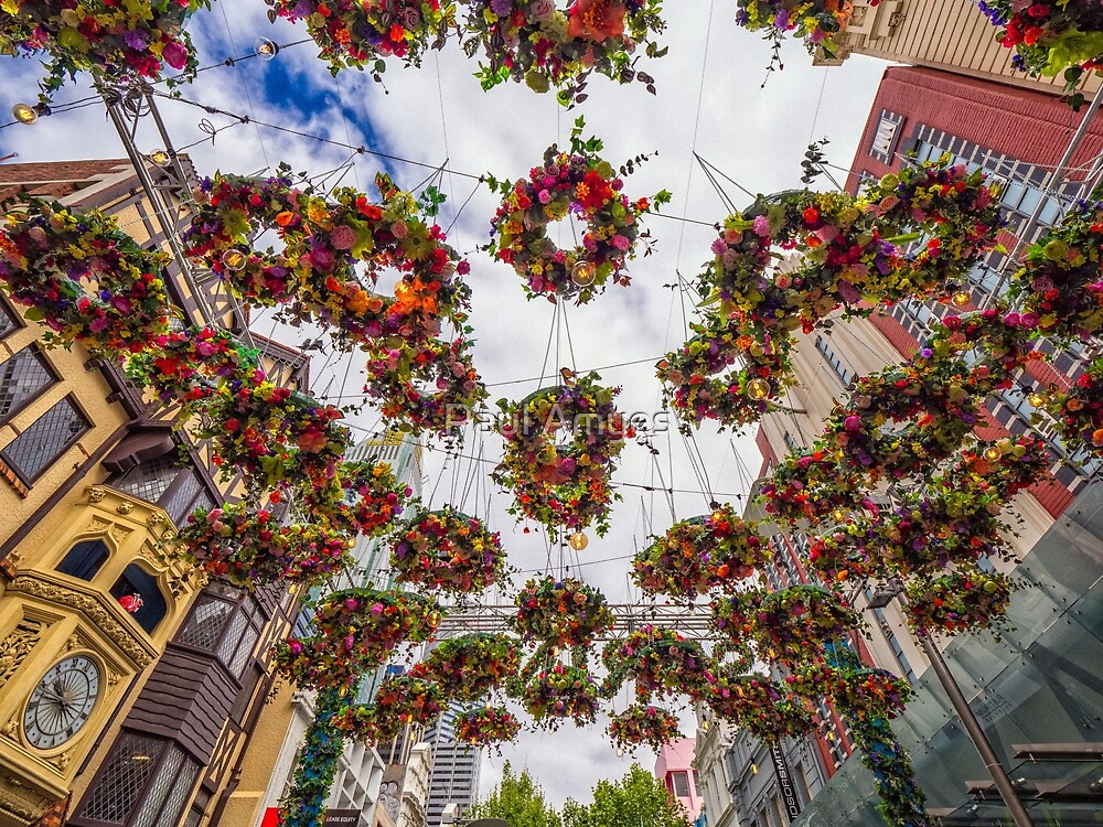 Floating Floral Wreaths by Paul Amyes