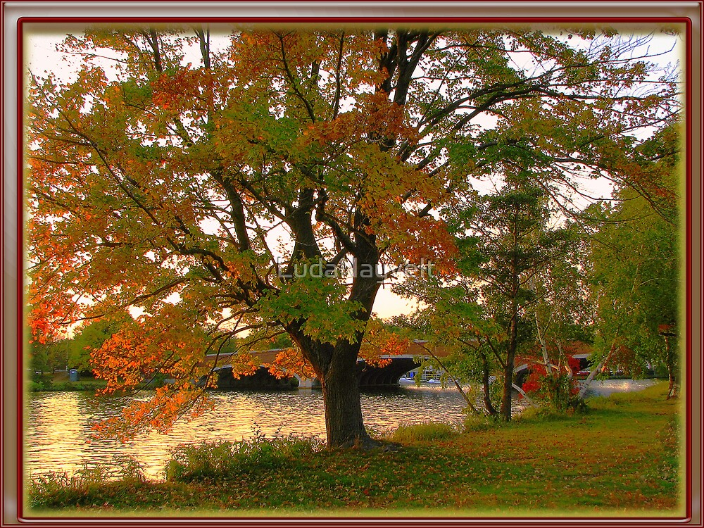 Fall time in New England by LudaNayvelt