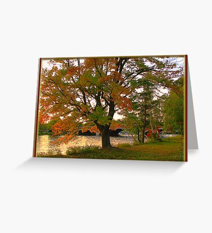 Fall time in New England Greeting Card