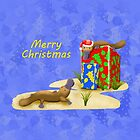 Platypus and Christmas Gifts by JumpingKangaroo