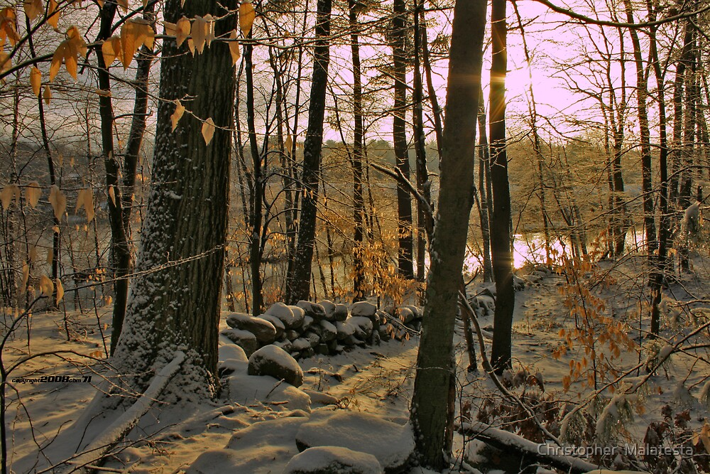 A New England Winter Morning by Christopher  Malatesta