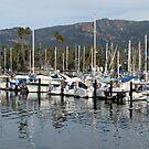 Marina at Santa Barbara by Jan  Wall
