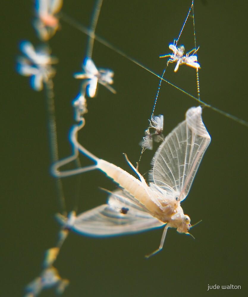 ghostly by jude walton