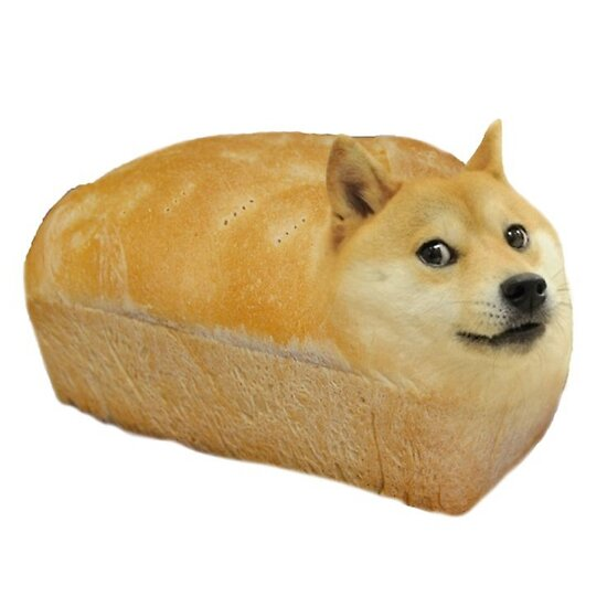 Quot Doge Meme Loaf Of Doge Quot Posters By Memesense Redbubble