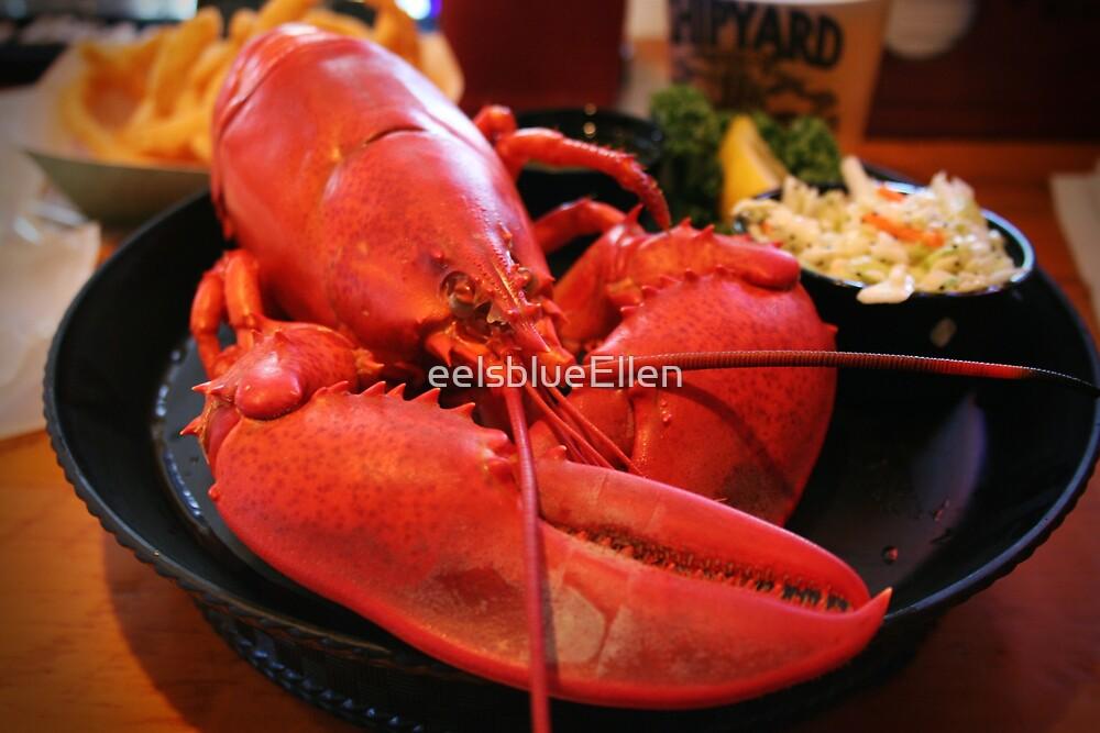 Maine Lobster by eelsblueEllen