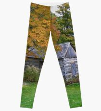 Balls Falls Garden near Hamilton, ON, Canada Leggings