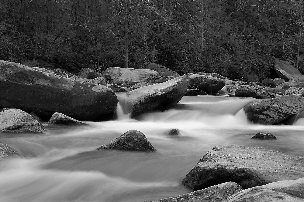 Rocky Broad River I  by lightboxfactory