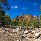 Creekbed, Brachina Gorge, Flinders Ranges, South Australia. by johnrf