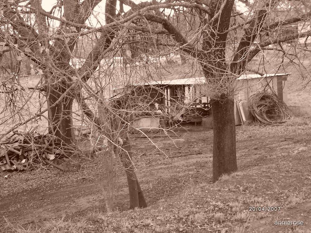 big shed by annierose