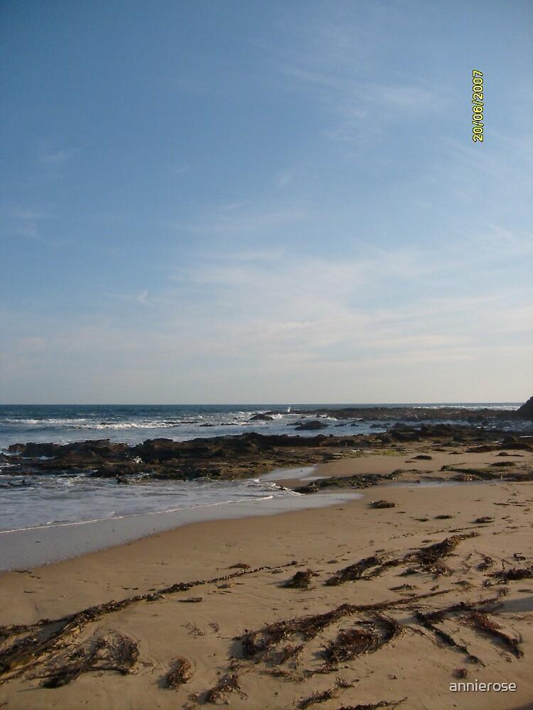 long beach by annierose