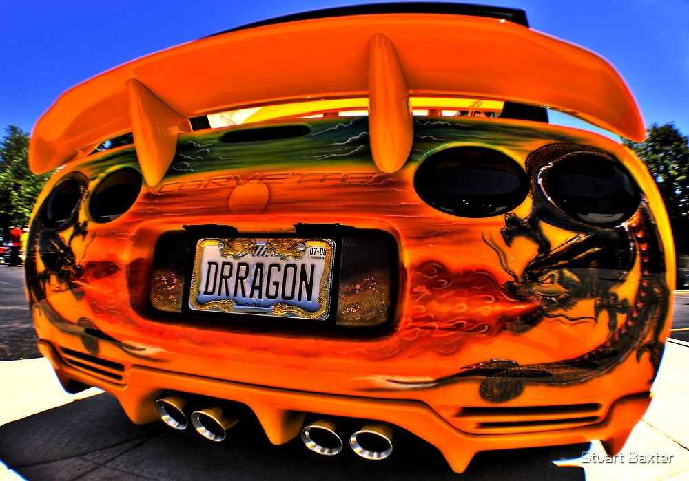 A Dragons Tail  by Stuart Baxter