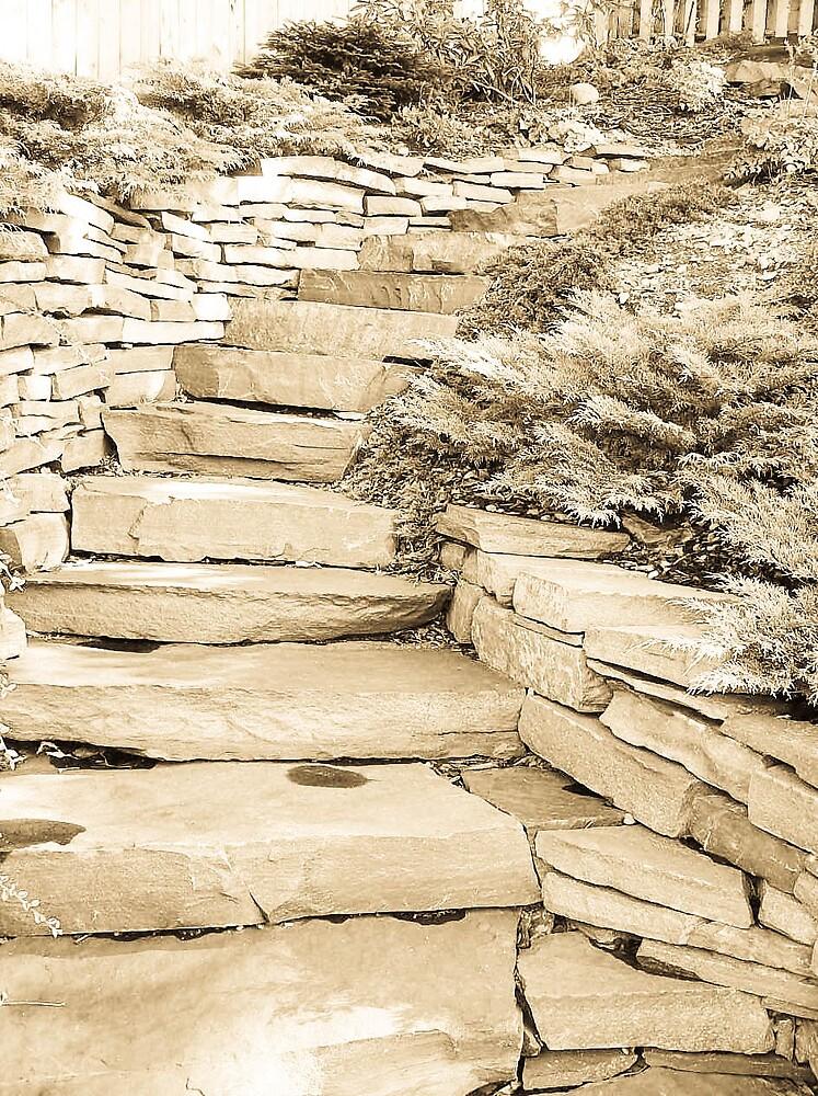 The path we choose by Jamie  Mallard