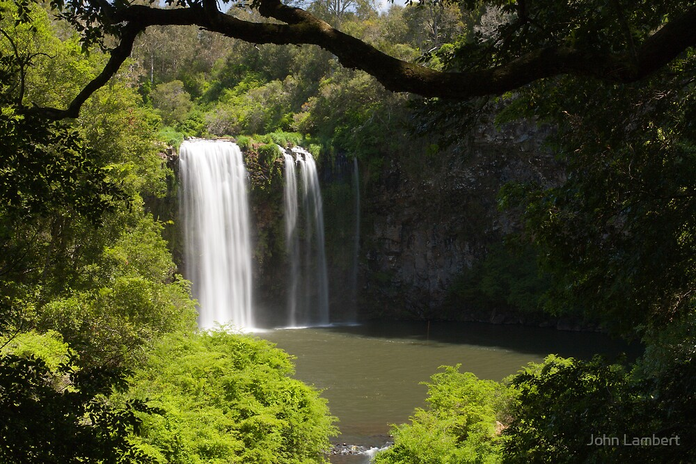 Dangar Falls, Dorrigo by John Lambert