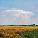 Michigan Farm Land by Kathilee