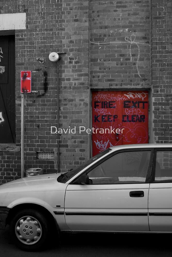 Car in Mono by David Petranker