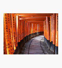 The torii gates of Fushimi Inari-taisha Photographic Print