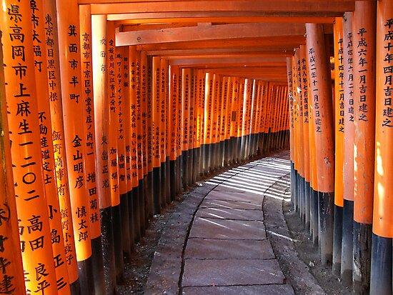 The torii gates of Fushimi Inari-taisha by Peter Zentjens