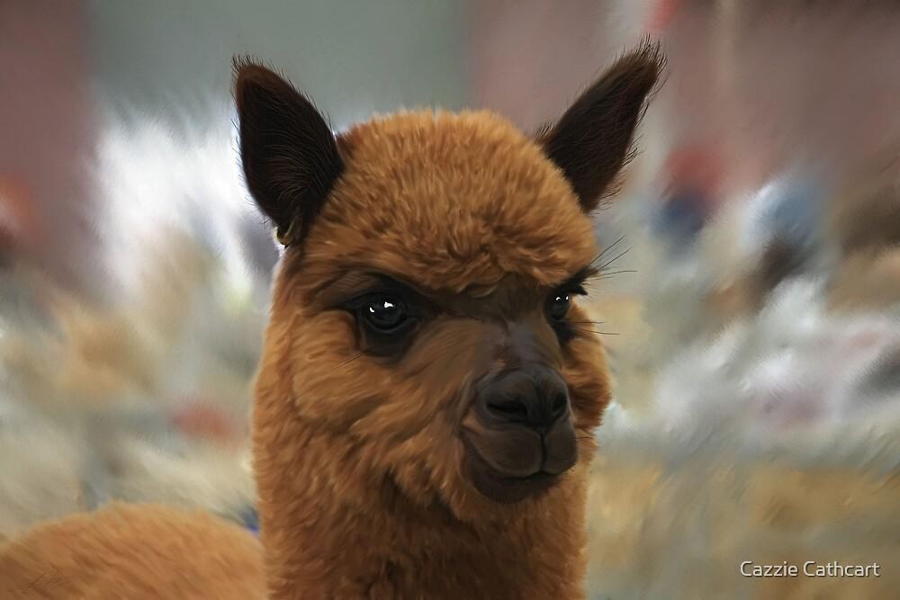 Alpaca 1 by Cazzie Cathcart