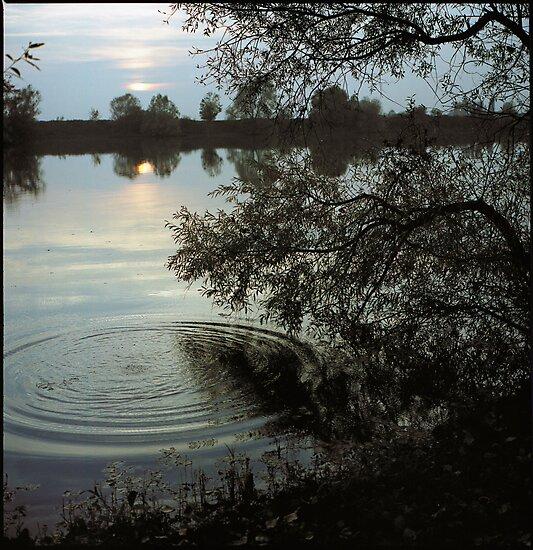 sunset pond • burgundy • 2007 by lemsgarage