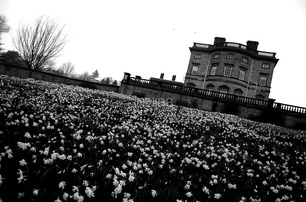 Bretton Hall by Neil MacPhail