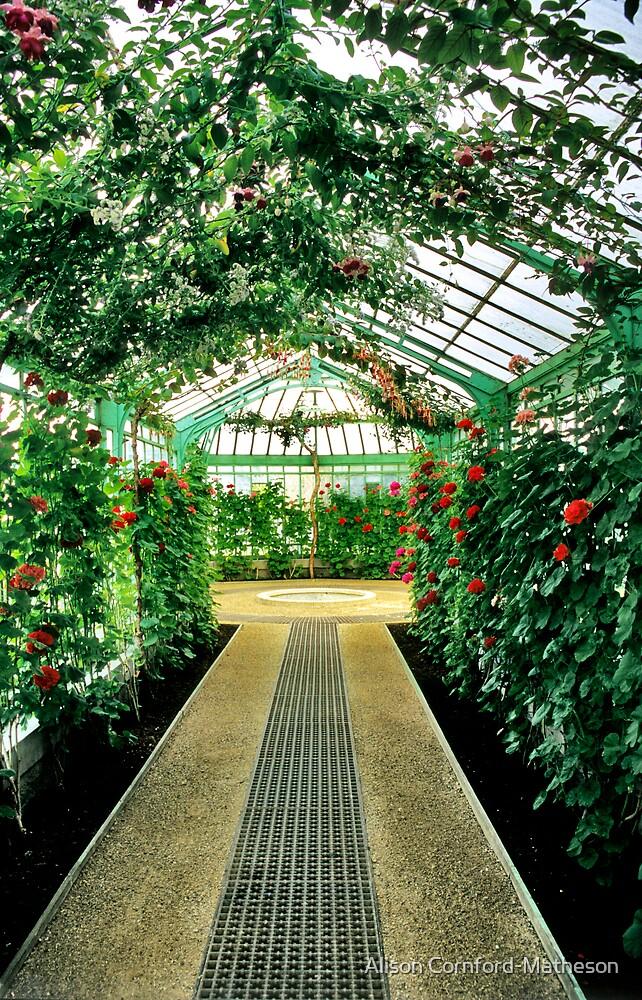 Royal Greenhouses - Laeken, Belgium by Alison Cornford-Matheson