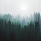 Autumn Fog | Green Edition by Okti W.