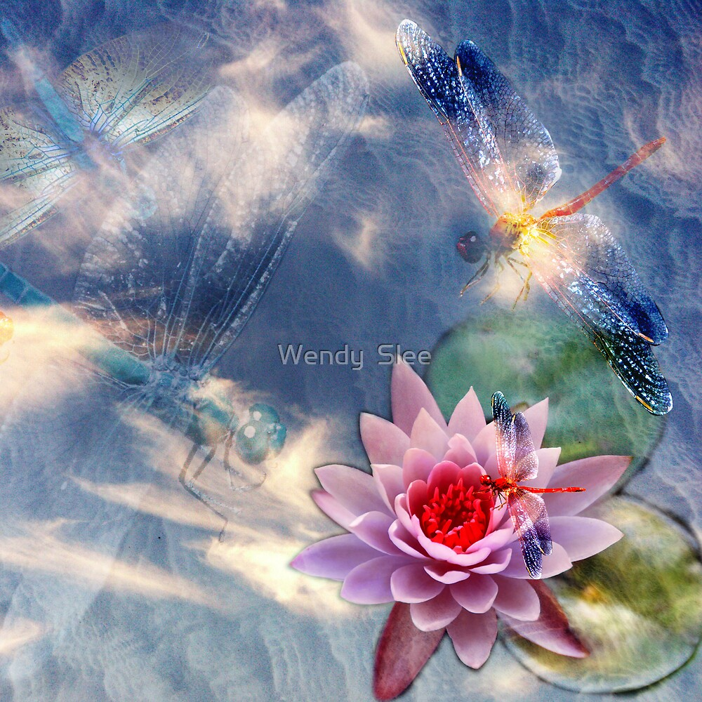 Dragonfly Magic by Wendy  Slee