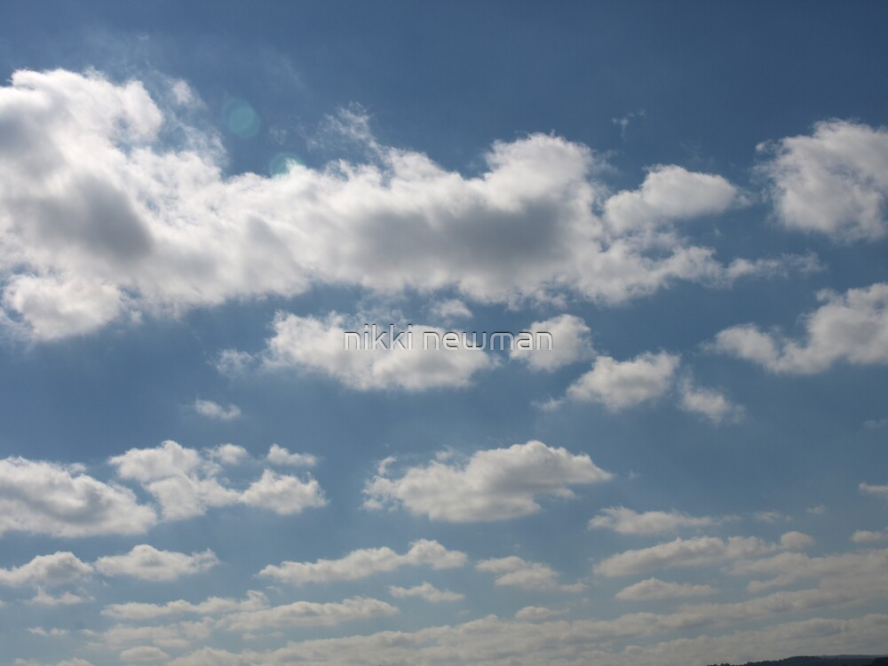 in the sky by nikki newman