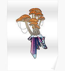 Mushroom Crystal Poster