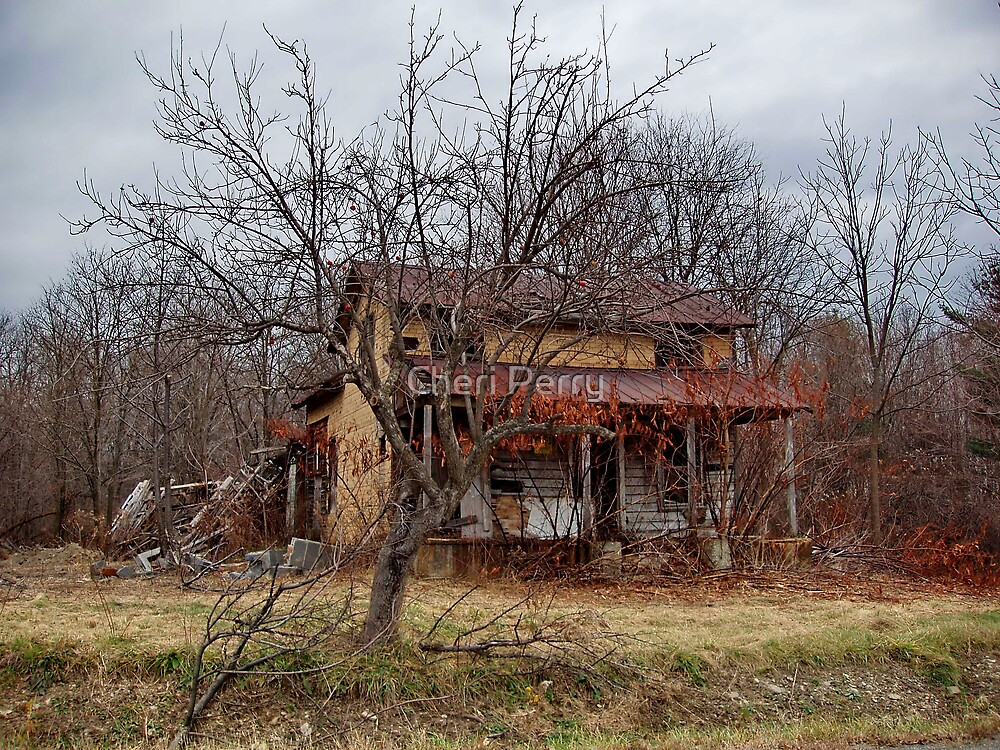 Dilapidated  by Cheri Perry