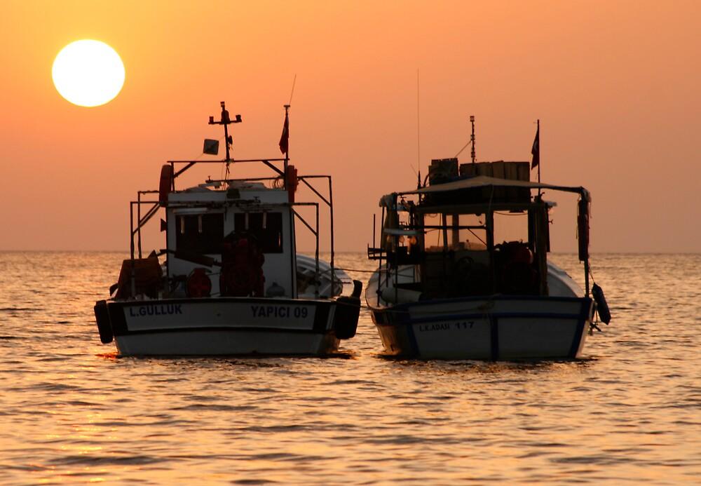 mavishar sunset by andy118