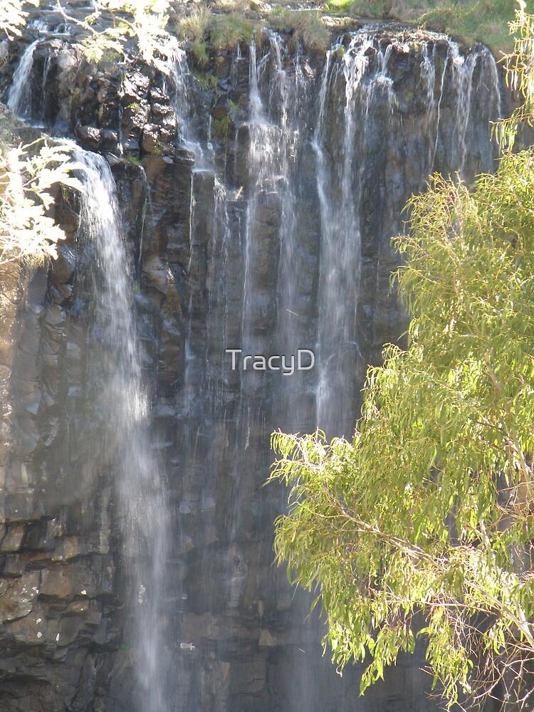 Trentham Falls by TracyD