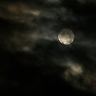The Howling Moon by Amy Simons
