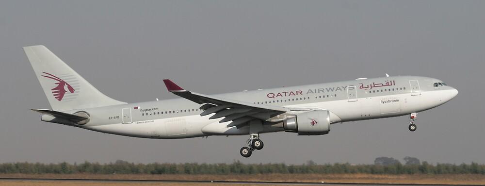 Qatar Airways landing by Paul Lindenberg