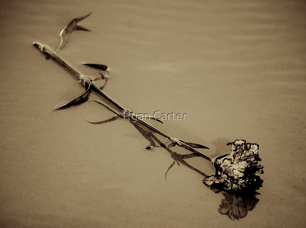 Discarded Love by Ryan Carter