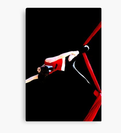 Stretch It Out Canvas Print