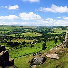 """Curber Edge Panoramic"" by Bradley Shawn  Rabon"