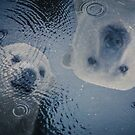 Polar Puddle by Randy Turnbow