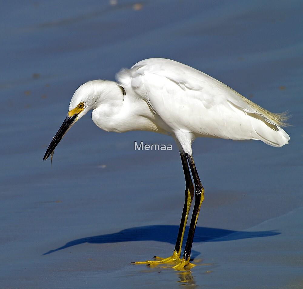 Egret Eating by Memaa
